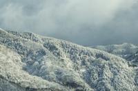 初雪 - 四季燦燦 癒し系~^^かも風景写真