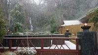 積もりました!(今はほとんどとけました) - 金沢犀川温泉 川端の湯宿「滝亭」BLOG