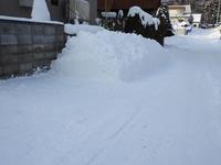 大雪 - 小さなお庭のある家(パート2)