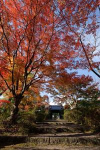 紅葉Before&After - katsuのヘタッピ風景
