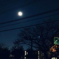 月がとても綺麗です - GARALOG