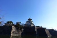 大阪城公園で梅を見た(2020) - ほんじつのおすすめ