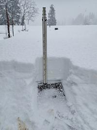 自宅裏の積雪深を測ってみました - 浦佐地域づくり協議会のブログ