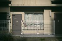 亀戸天神 - IN MY LIFE Photograph