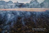 後楽園 芝焼き-2 - 気ままな Digital PhotoⅡ