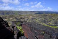 ハワイイ紀行-6- - Photo Terrace