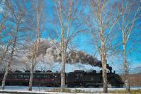 2020SL冬の湿原号2(2020/02/07-09) - まるさん徒歩PHOTO 4:SLやまぐち号・山風景など…。 (2018.10.9~)