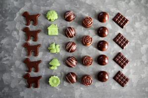 チョコレートの行列と 撮影の行列 - のんびりのびのび