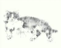 《【アーカイブス59】『ヤマセミの渓から――― ある谷の記憶と追想》 - 画室『游』 croquis・drawing・dessin・sketch