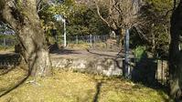 コンセキコレクション18 - ウンノ接骨院(ウンノ整体)と静岡の夜