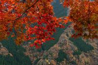 ナメゴ谷の龍 - katsuのヘタッピ風景