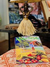 キホロカイが『素敵なフラスタイル」に紹介されました。 - Takako's Diary