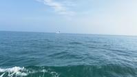 建国記念日に船メバル釣りに行く - ステンドグラスルーチェの日常
