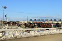 帯広ばんえい競馬と釧路タンチョウ - ぶらりさっぽろ♪~ 思うまま、気ままに♪~