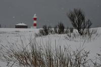 冬の石狩浜海と川が出会うところ - ときどきの記 from 小樽
