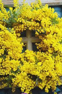 個性活かしたミモザリース - お花に囲まれて