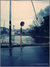 ブルーレイン - 心のカメラ   more tomorrow than today ...
