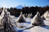 凍れる世界 - 風の香に誘われて 風景のふぉと缶