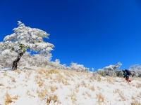 紺碧なお空の下で真っ白な雪山を楽しむ~【台高】2/11 - 静かなお山の森歩き~♪
