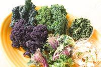 頂きものお野菜でサラダ - おいしい便り