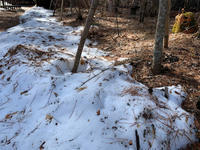 やっと雪解けです - Naturfreude