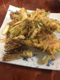 根っこの天ぷら - 地上50mでも野菜はできました、そして3mへ