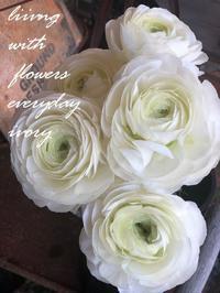2月17日 -  Flower and cafe 花空間 ivory (アイボリー)
