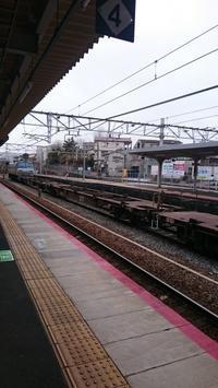 朝の西条駅で - Tea's  room  あっと Japan