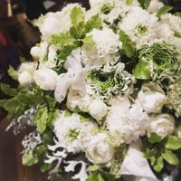 2月の花嫁へ - 我蘭堂(ガーランド)バックヤードへようこそ!