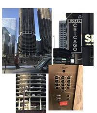 """ドナドナできない""""ホテル・シカゴ"""" - ののち幾星霜"""