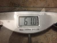 糖質制限1カ月経過 - アッキーのダイエット日記
