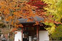 紅葉~龍泉寺 - katsuのヘタッピ風景