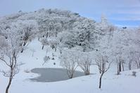 霧氷に囲まれたハートの池赤ゾレ山 - 峰さんの山あるき