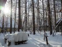 今季最大の積雪量に・・結局、冬に降る雪の量は同じ? - 十勝・中札内村「森の中の日記」~café&宿カンタベリー~