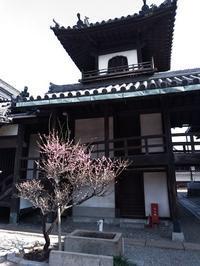 南部同窓会・尼崎城 - これから見る景色