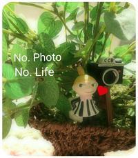Heart    Pattern ❗ - LAGOMな……PHOTO   LIFE !
