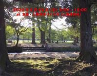 【 出展します◎ 】 2/23(日) 京都・上賀茂 手づくり市(235番ブース) -  ア ウ ラ・ロ コ / a u r a・l o c o