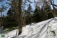冬の三本滝へ - 乗鞍高原カフェ&バー スプリングバンクの日記②