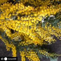 2/23(日)kinonさんの小さなマルシェ -  お花とハーブのアトリエ muguette