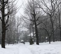 吹雪の中の永山邸 - やさしい時間が流れてる