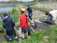 【第12回霞ヶ浦自然観察会「春目覚めた魚や草花を探そう」を実施します!】 - ぴゅあちゃんの部屋