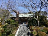 東戸塚周辺の旅 #1 - 神奈川徒歩々旅