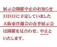 展示会中止のお知らせNo.2010 - 東洋蘭風来記奥部屋