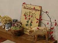 ハーブのお茶会 in BRAN ハチミツの会の中止 - sola og planta ハーバリストの作業小屋