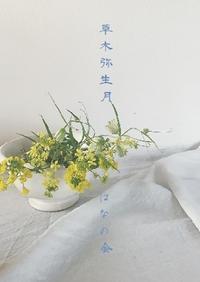 草木弥生月はなの会 - tukikusa note