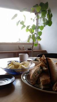 吉見の家の朝 - 成長する家 子育て物語