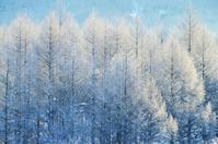 冬の裏磐梯2020-5 - 自然と仲良くなれたらいいな2