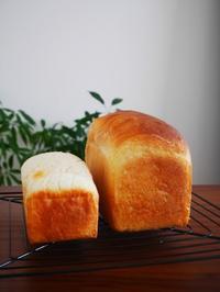 食パンと米粉食パンとレーズン食パン - This is delicious !!