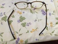 メガネを拭いていたら壊れちゃった!!! - わたしの好きな物