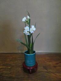 水仙の花と薬 - 活花生活(2)